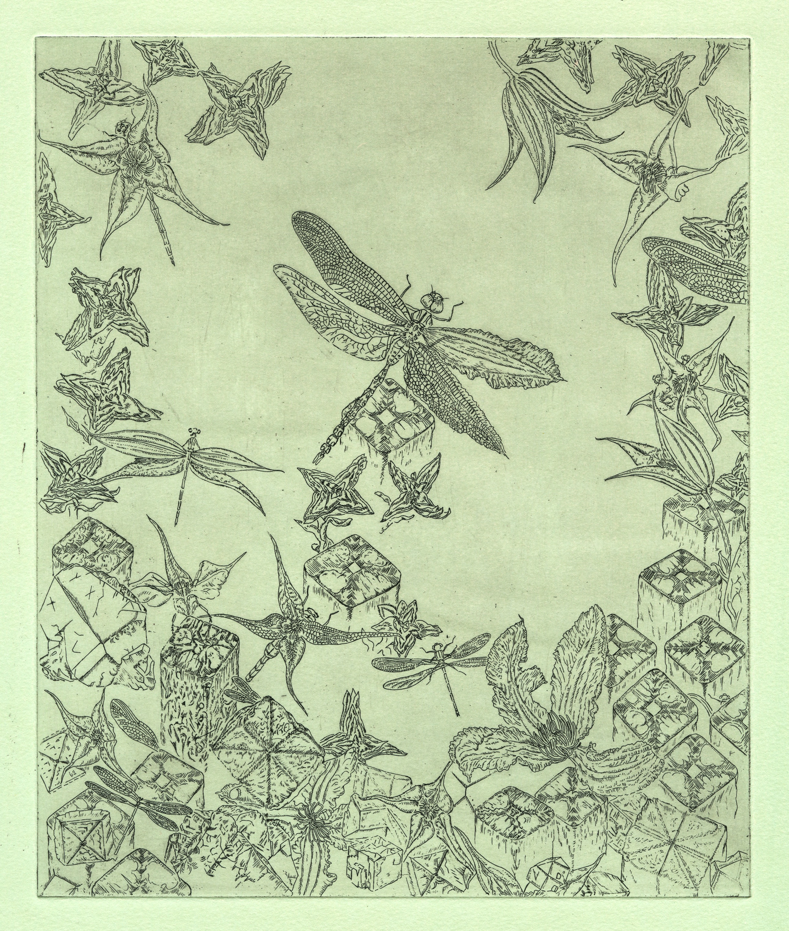 This image is a copper etching and is from a research project by Gemma Anderson. The project is entitled Isomorphology which is a new term to both science and visual arts practice. The term was derived by Gemma and the outcome will be a new type of taxonomic order for organic life; a drawing based method of enquiry into shared forms of animals, plants and geology. The illustration shown is about four-fold symmetry. Broadly interdisciplinary, Gemma engages in deep study for subject matter including mathematics and the philosophy of art and science. Truly polymathic!